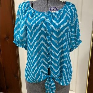 Sheer button down blouse with tie front bottom.